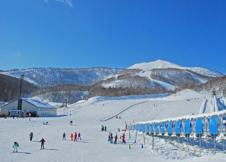 2. Skiing and Snowboarding in Hokkaido