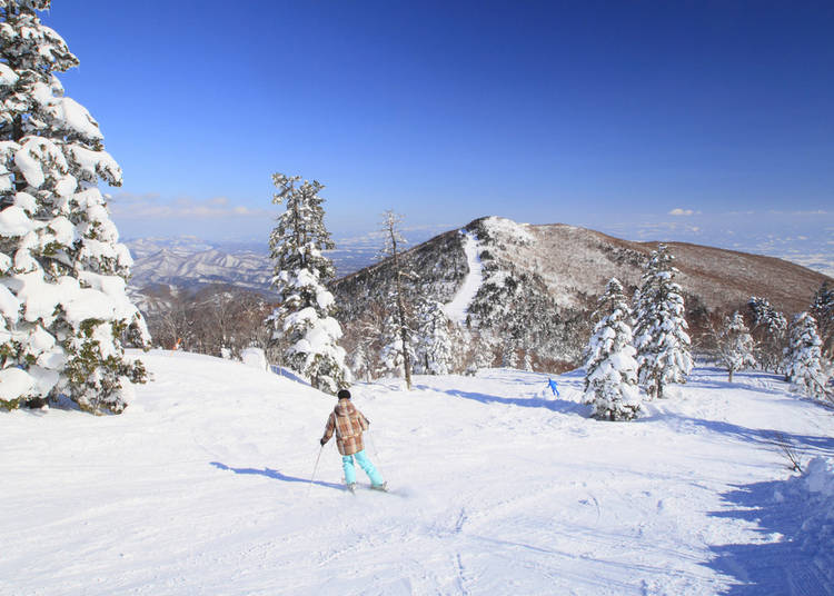 3. Skiing and Snowboarding in Iwate Prefecture