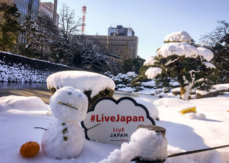 Tokyo Snowmageddon 2018 - Tokyo Sees Largest Snowfall in Over 4 Years!