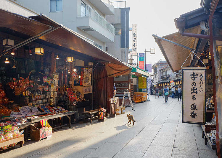 10 Reasons Why We Love Shitamachi, Tokyo's Historic Downtown Areas!