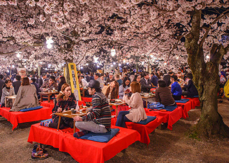 Complete Hanami Cherry Blossom Party Guide - Enjoy a Picnic among the Sakura blossoms!