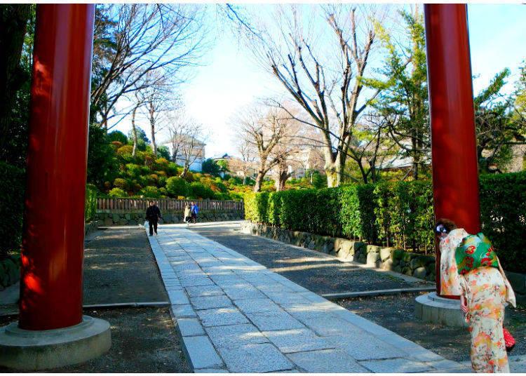 Leaving the Shrine: Bow Once Again