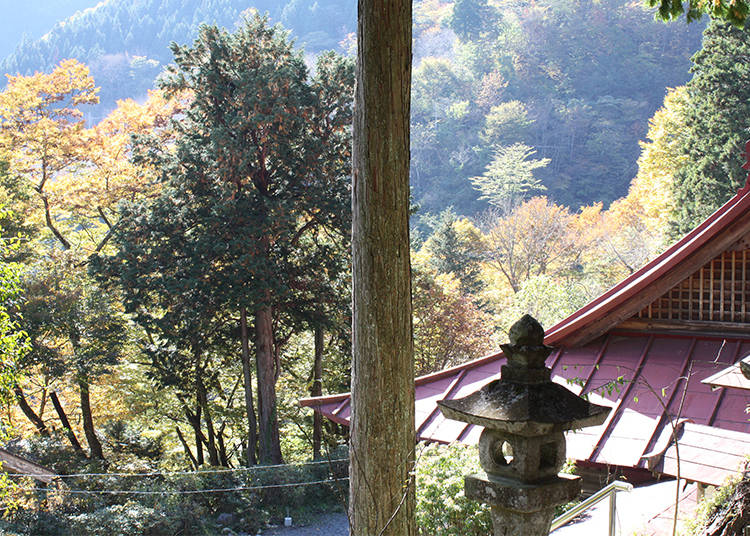 "What is ""Shukubo"" Temple Lodging?"