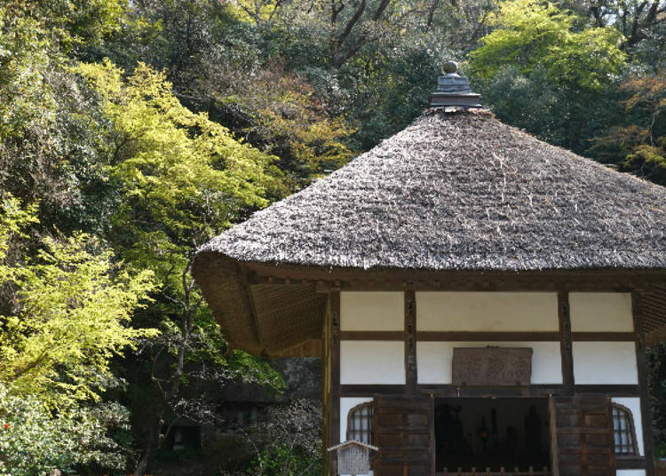 Kaisandō, Where Time Flows Slowly