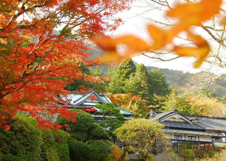 Staying at a 130-Year Old Hotel Amidst Hakone's Rich Scenery