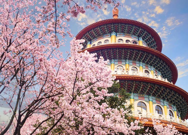 對於台灣人的印象之4:重感情