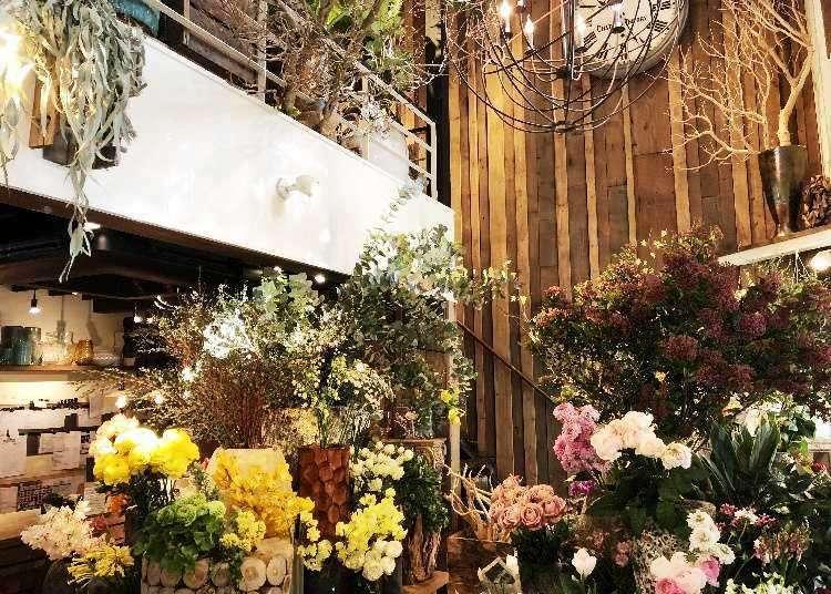 【広尾】おしゃれ空間!隠れ家ツリーハウスカフェ「レ・グラン・ザルブル」