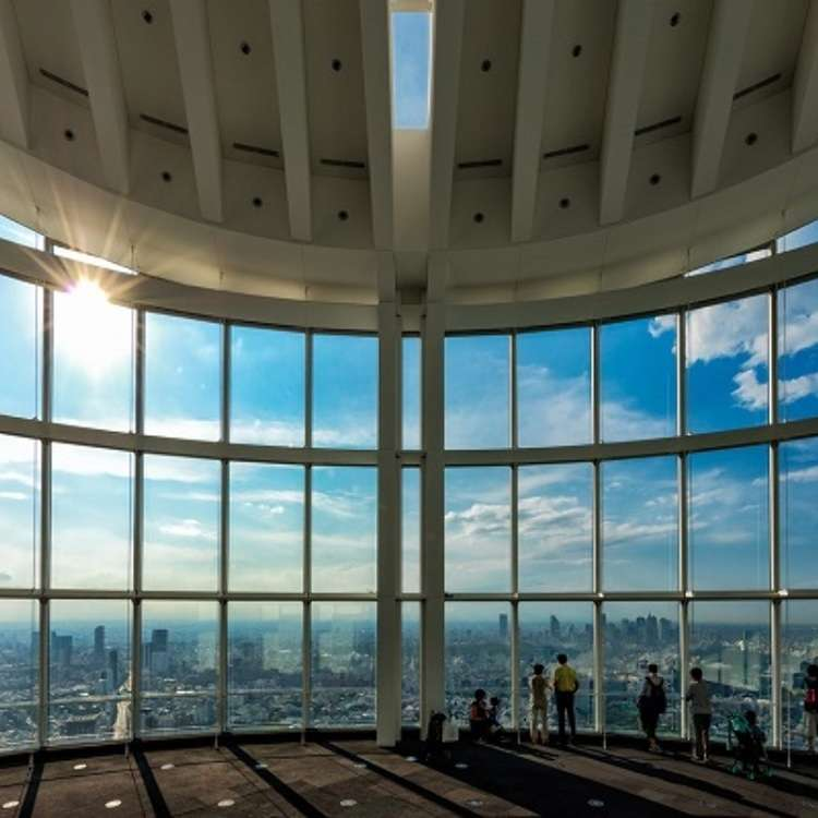 居高臨下欣賞東京街景!空中綠洲六本木新城展望台「東京城市觀景」