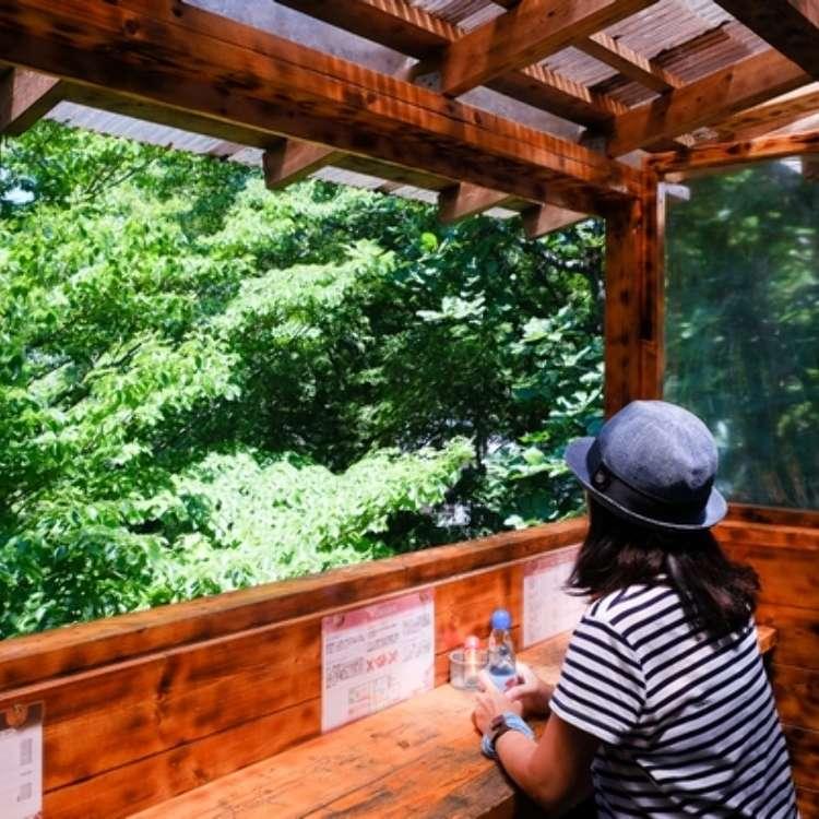 絕景、美食、溫泉…樂趣滿滿的自然樂園-高尾山
