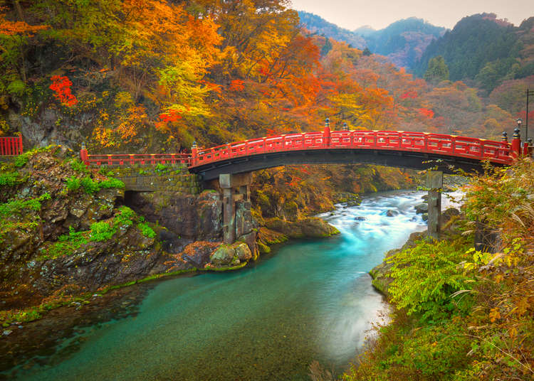 [MOVIE] Beautiful Nikko! Must-See Spots to Discover Japan's Nature, History, and Culture