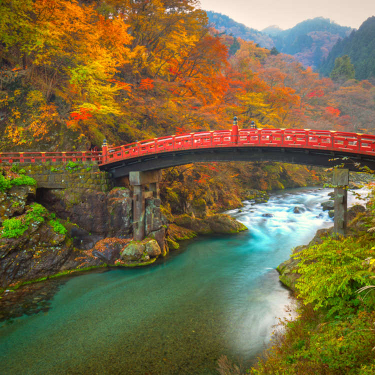 [MOVIE]Beautiful Nikko! Must-See Spots to Discover Japan's Nature, History, and Culture