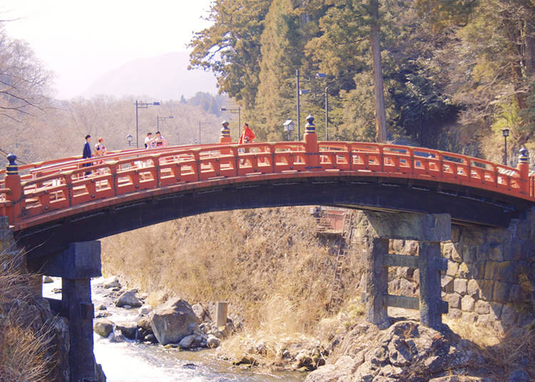 Tourist's Must-See Recommendations 