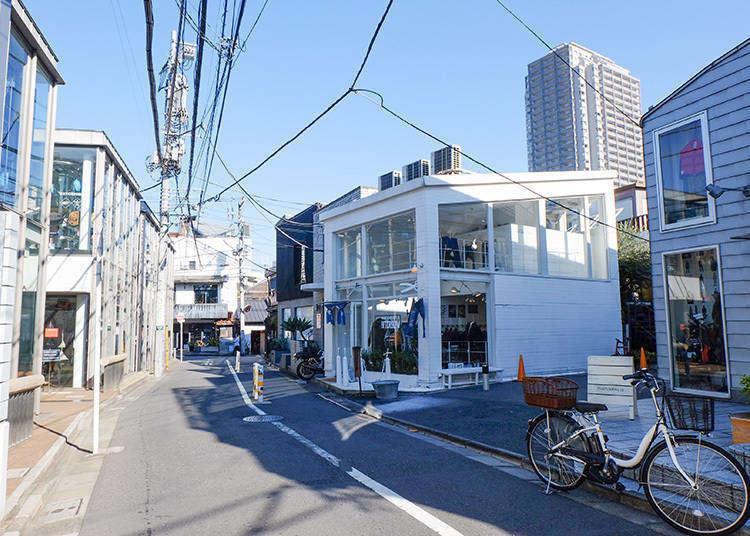 讓你再度愛上東京 發現不一樣魅力的7個東京景點