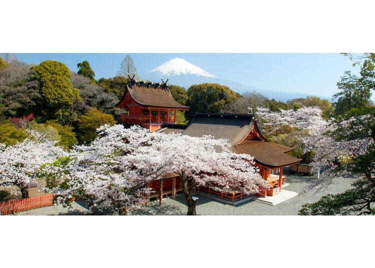 Is Mount Fuji on Private Land? Or Does It Belong to the State?
