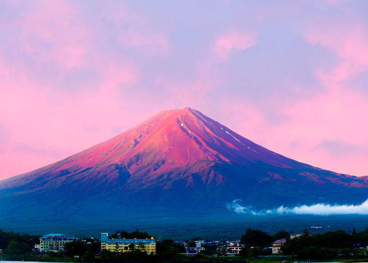 """What is the """"Red Fuji?"""""""