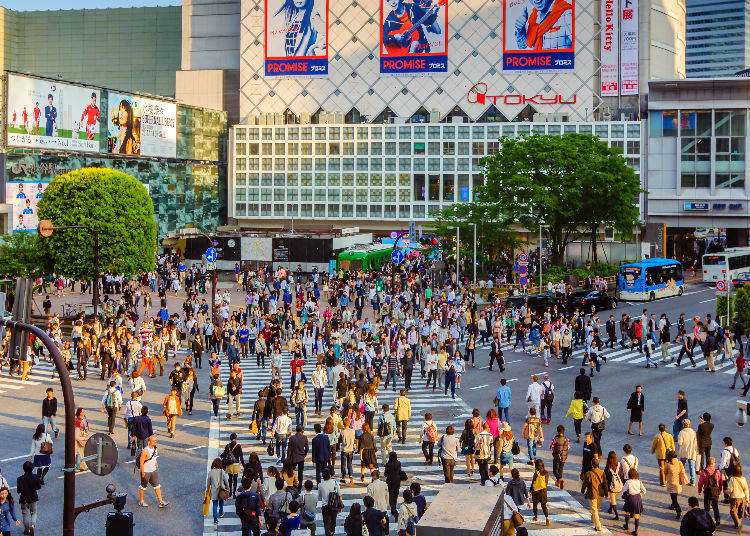 Secret #6: Top Recommended Spot to Watch From Above As Recommended By Japanese Natives!