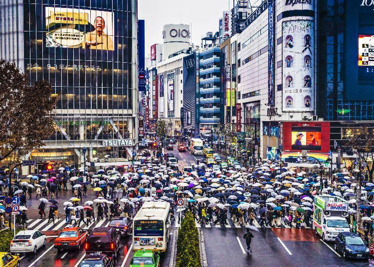 Secret #7: Japanese Secret! Rainy Day Recommendation!