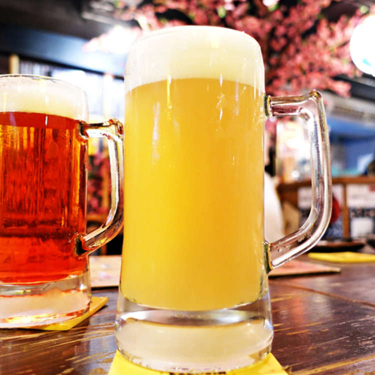 Cheers! Complete Guide to Drinks You Can Find at a Typical Japanese Pub