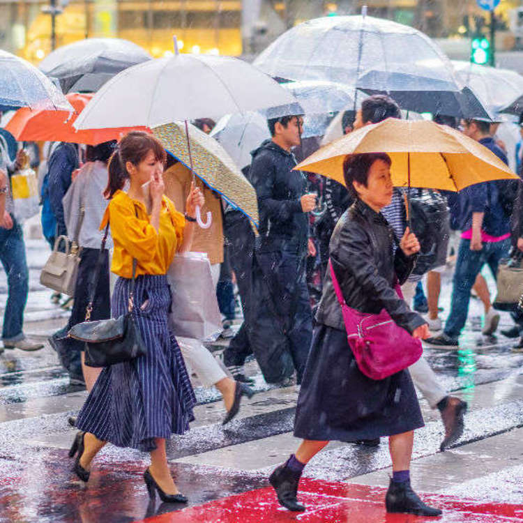 10 Ways To Enjoy A Rainy Day In Tokyo