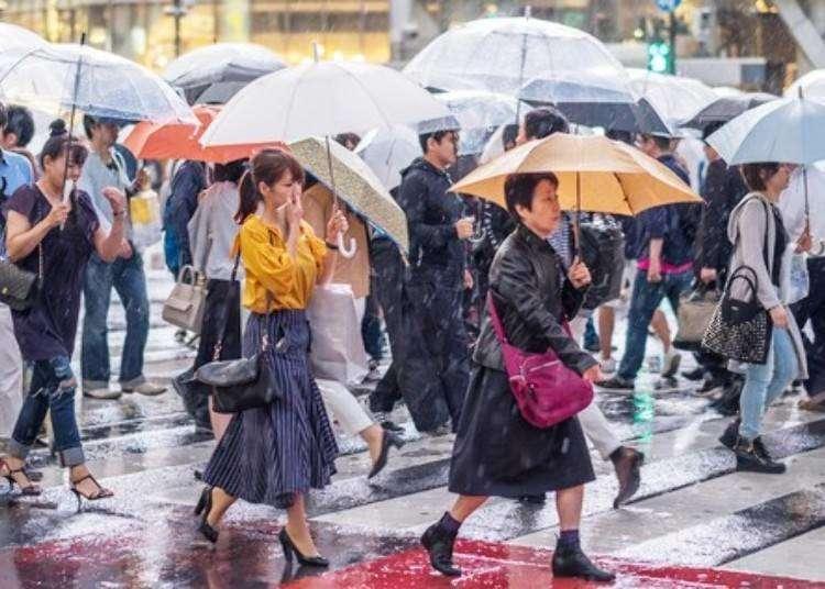 雨天觀光指南 東京精采的室內景點設施推薦 雨天照樣也能這麼好玩!