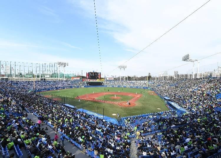 オープンエアで開放感のある神宮球場