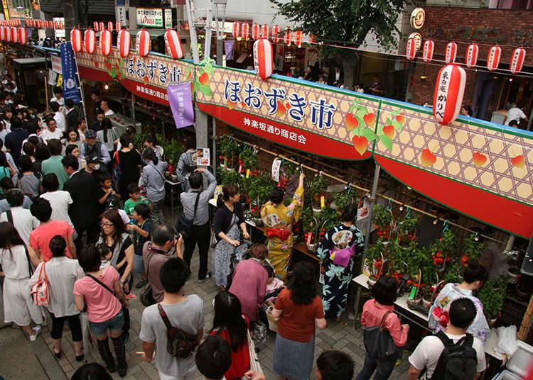 The Kagurazaka Festival
