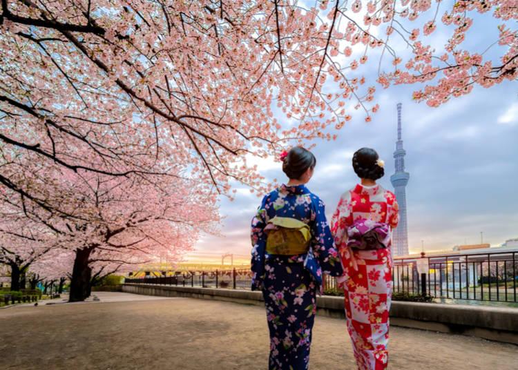 2. Asakusa - Tokyo's Traditional Cultural Center