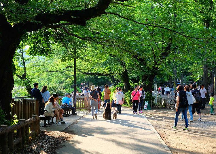 "12. Kichijoji - ""Experience Japan's rural life within Tokyo"""