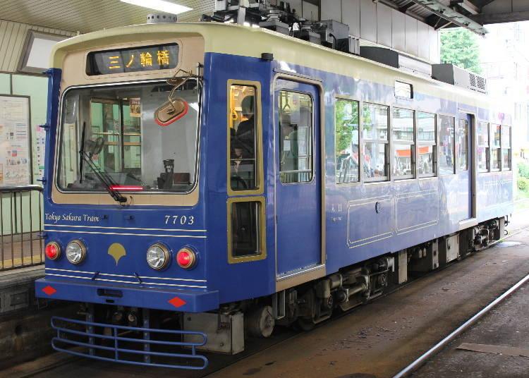 What is the Tokyo Sakura Tram?