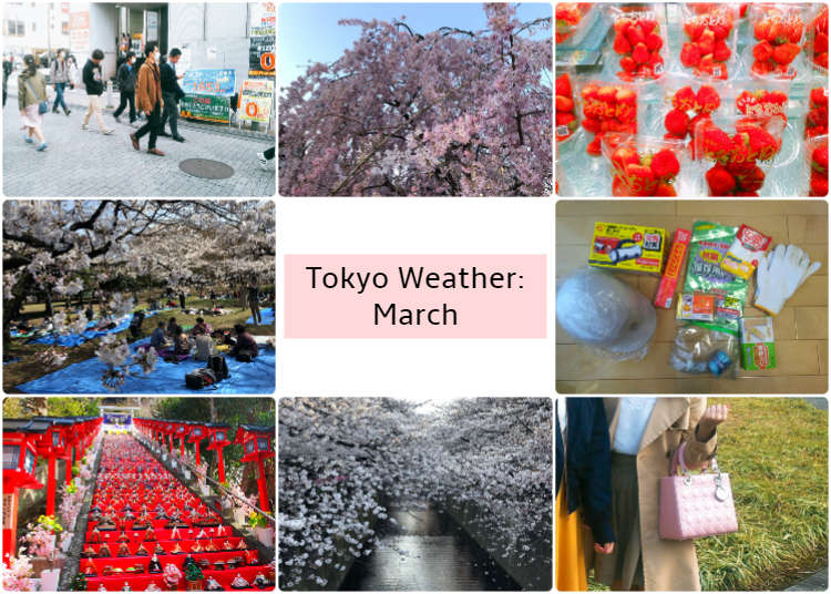 What's the weather like in Tokyo in March?