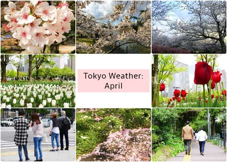 What's the weather like in Tokyo in April?