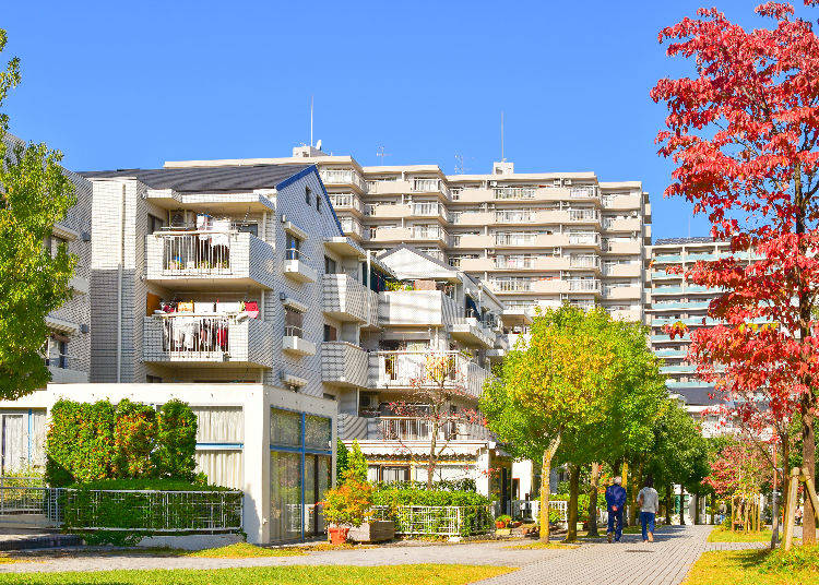 All About Apartment Search and Viewing