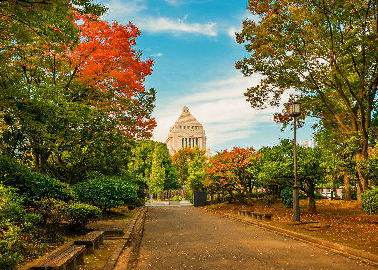 Visiting the National Diet Building in Tokyo: Take a Peek at Japan's Government with a Free Tour!