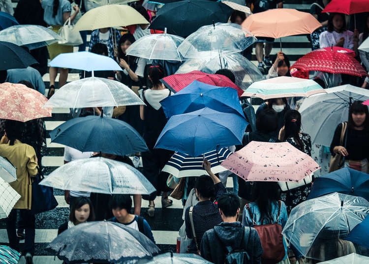 How to Survive Japan's Rainy Season