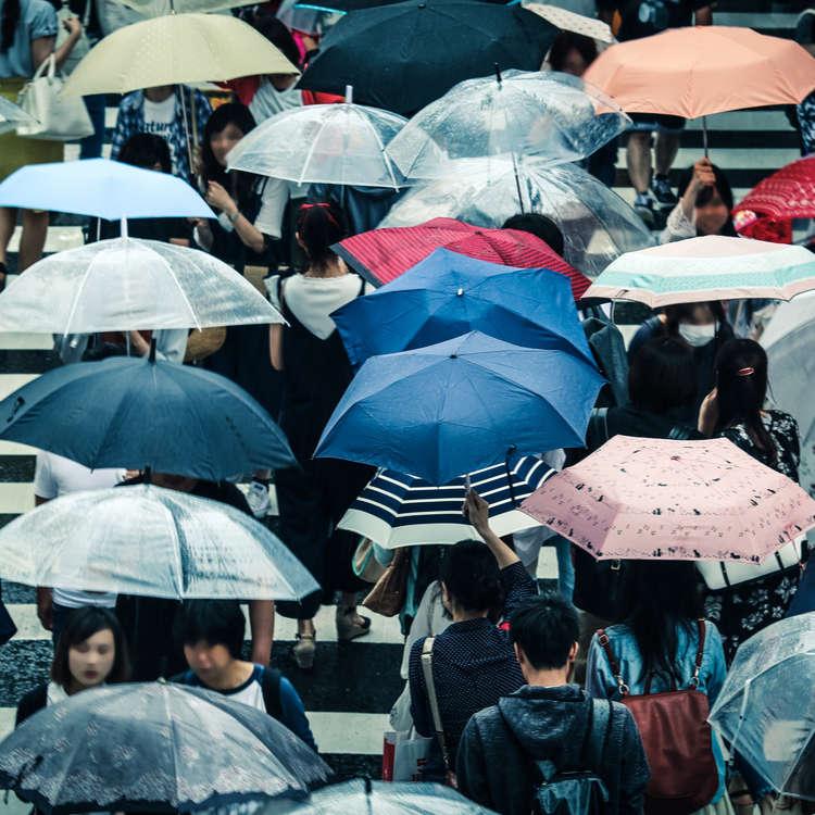 How to Survive Japan's Rainy Season