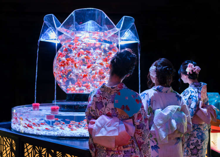 Merveilleux [Movie] Art Aquarium: Experiencing Tokyou0027s Incredible Living Exhibition!
