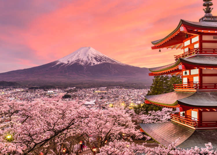 8 Things I Wish I'd Known Before Coming to Japan