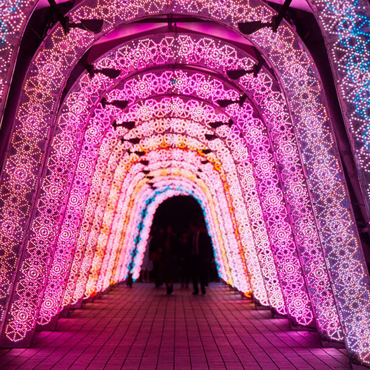 Visiting Tokyo for Christmas? Check Out These Top 9 Romantic Illuminations for 2018-2019!