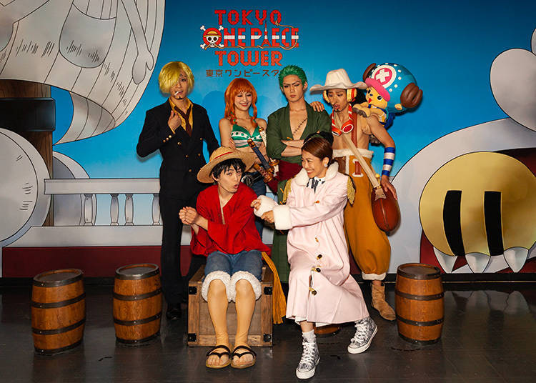 Photo Greeting: Rush to Get a Numbered Ticket for a Group Shot with the Straw Hat Pirates! (5F)