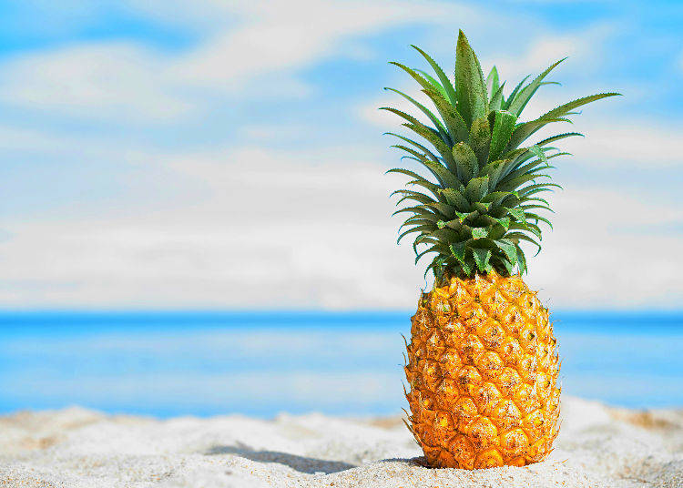 """Pine"" (パイン) – Pineapple"