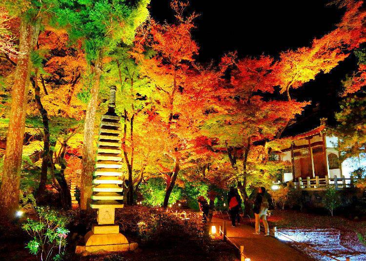 Chinzanso Garden (Mejiro, Tokyo)