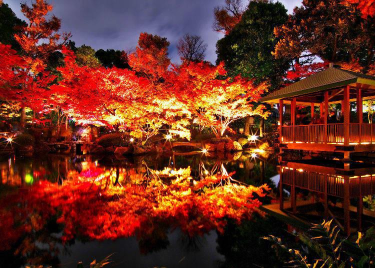 Otaguro Park (Ogikubo, Tokyo)