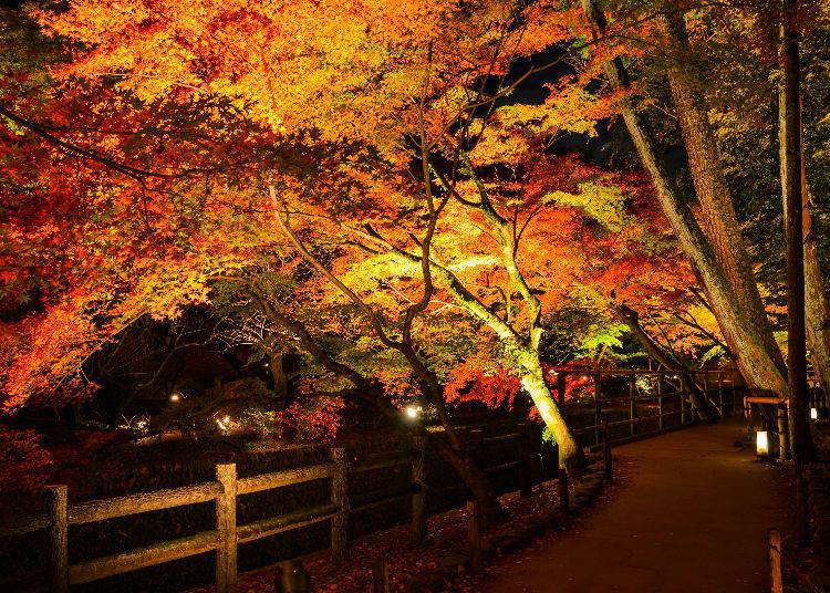 Hase-dera Temple (Kamakura, Kanagawa)