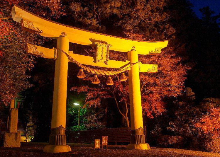 Nagatoro Autumn Leaf Festival (Chichibu, Saitama)
