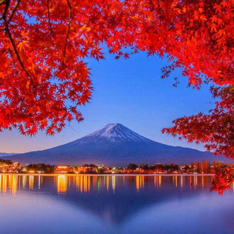 일본 단풍여행 - 올해(2018년)의 인기 단풍 명소 8곳