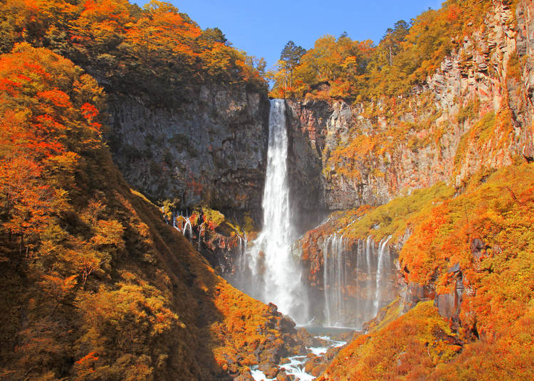 4. What to see in Japan in autumn