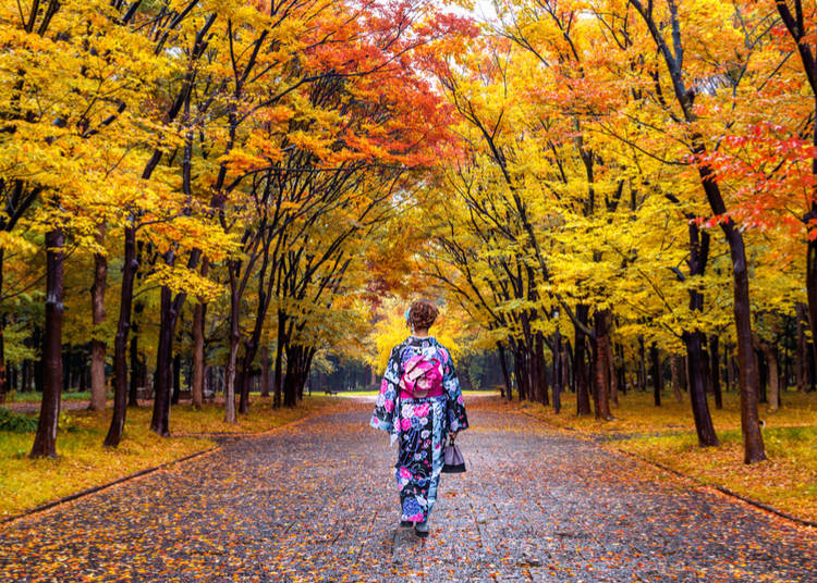 5. What to do in Japan in autumn