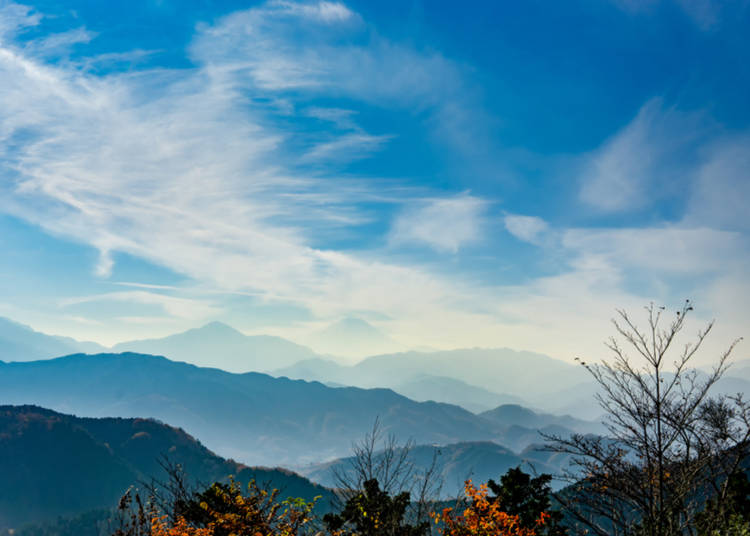 6. Take In a Winter Hike Around Tokyo