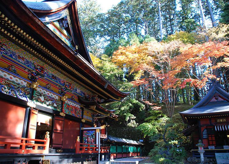 素敵な紅葉写真攻略法③:カラフルすぎる三峯神社のお社は、思わず撮りたくなる美しさ