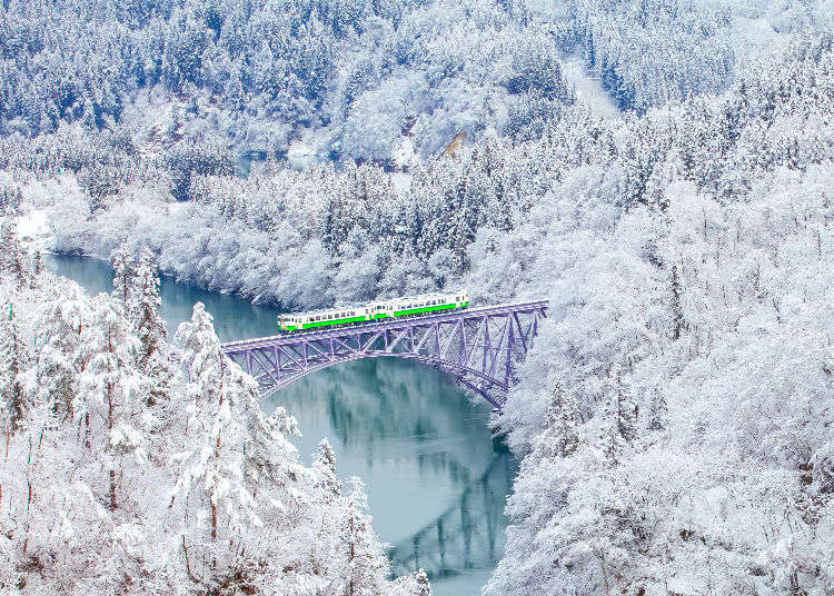 Japan Winter Vacation: 5 Things You Need to Know, From Temperature to Traffic!